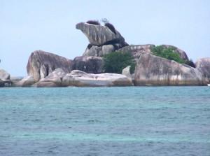 Burung Garuda Tanjung Kelayang Belitung
